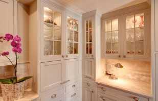 Особенности кухонных шкафов под посуду, нюансы подбора