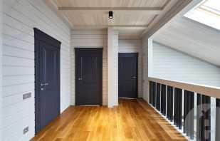 Популярные модели дверей для вашего жилья в черной эмали