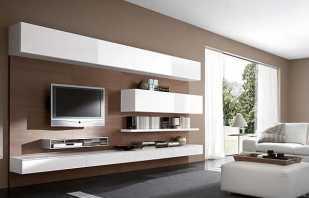 Обзор навесных шкафов в гостиную, важные нюансы подбора