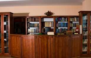 Обзор мебели для библиотек, основные требования к конструкциям