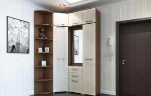 Варианты угловых шкафов для прихожей, фото моделей