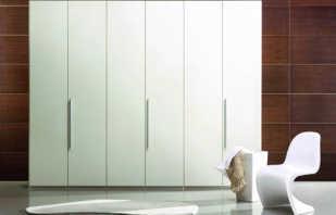 Обзор шкафов распашных белых, правила выбора