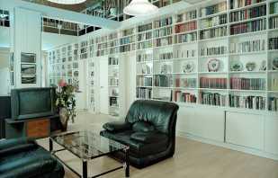 Особенности книжных шкафов и библиотек для дома, обзор моделей