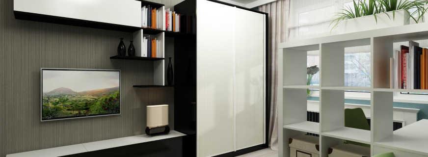 Какие существуют шкафы для зала, обзор моделей