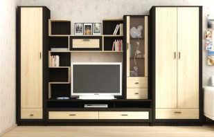 Мебель цвета венге, фото примеров и моделей