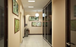 Обзор моделей шкафов для узкого коридора, правила выбора