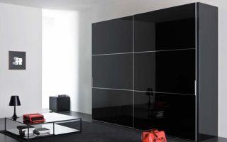 Правила выбора черных шкафов, обзор моделей