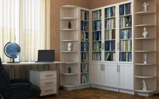 Какие существуют угловые книжные шкафы, и их особенности
