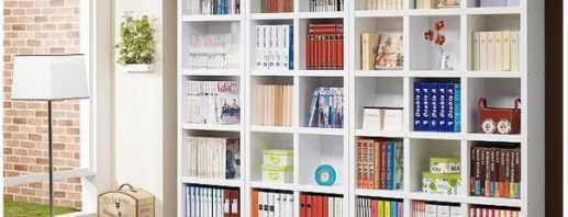 Модели книжных шкафов белого цвета, какие лучше