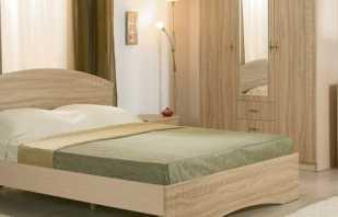 Мебель цвета молочного дуба в интерьере, фото вариантов