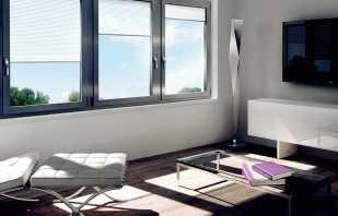 В каких случаях идеально подойдут алюминиевые окна