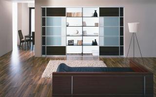Обзор шкафов в гостиную, и фото существующих вариантов
