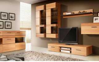 Основные предметы мебели, и фото популярных моделей