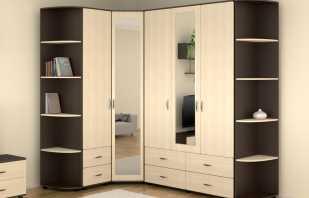 Варианты шкафов угловых с зеркалом, обзор моделей