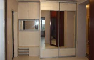 Обзор шкафов с зеркалом для прихожей, правила выбора