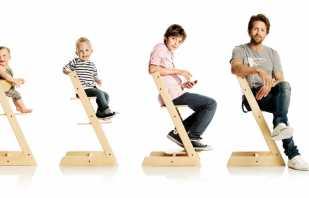 Преимущества использования растущих стульев, популярные модели