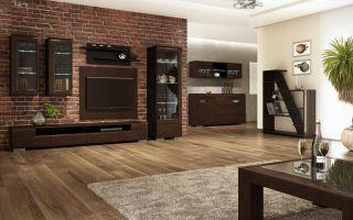 Как выбрать корпусную мебель в гостиную, фото помещений в современном стиле