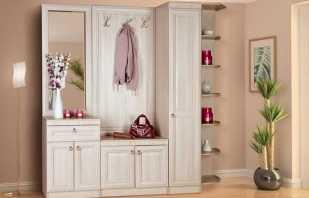 Какие варианты мебели в прихожую классического стиля, советы по выбору