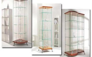 Особенности шкафов витрин стеклянных, правила выбора