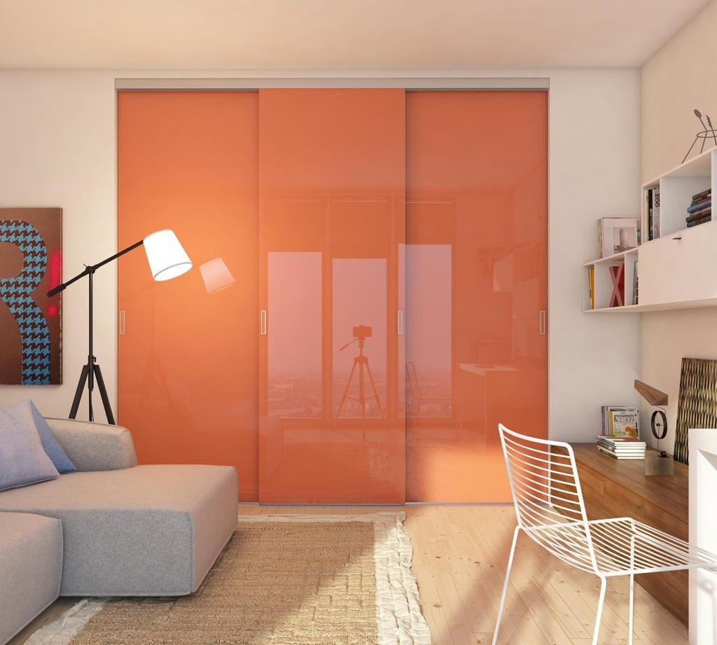 Цветная дверная панель