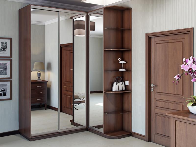 шкаф с зеркалом в прихожую какие существуют модели конструкций