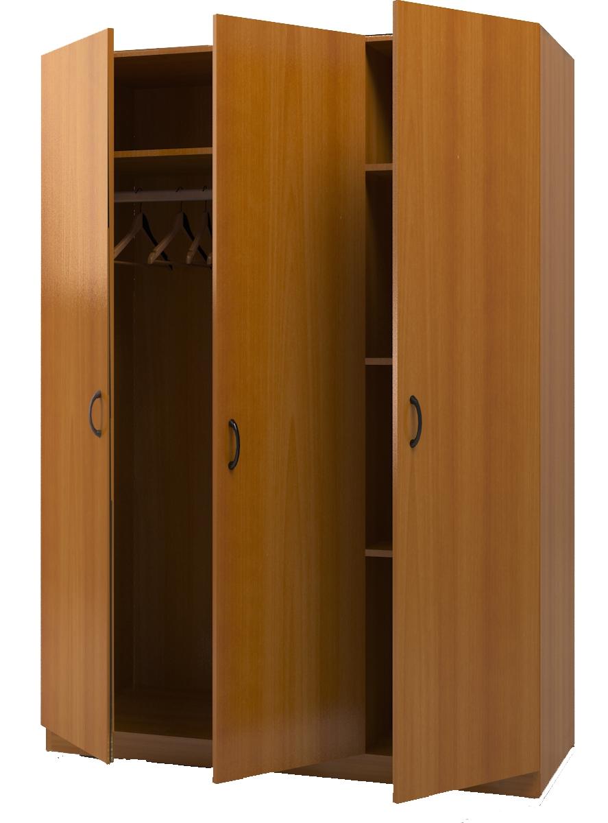 Распашные дверцы