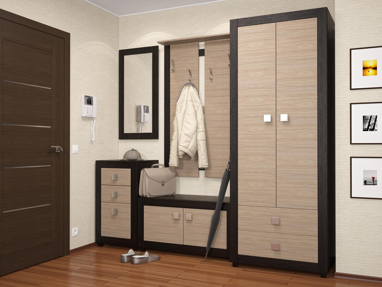 Шкаф в прихожую, и фото подборка с различными моделями и опи.