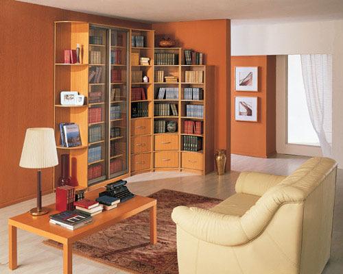 Вариант хранения книг