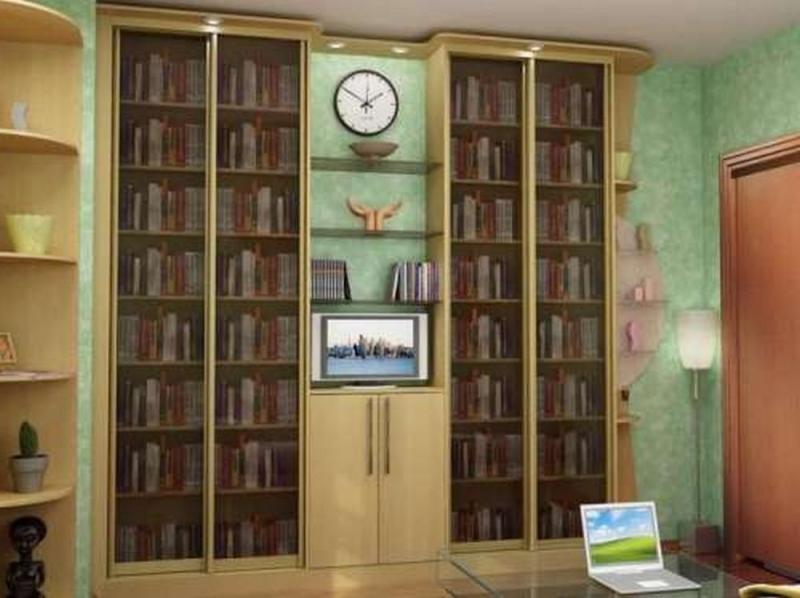 Шкаф библиотека, назначение конструкций и существующие разно.
