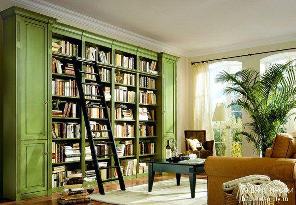 Библиотека в зеленом цвете