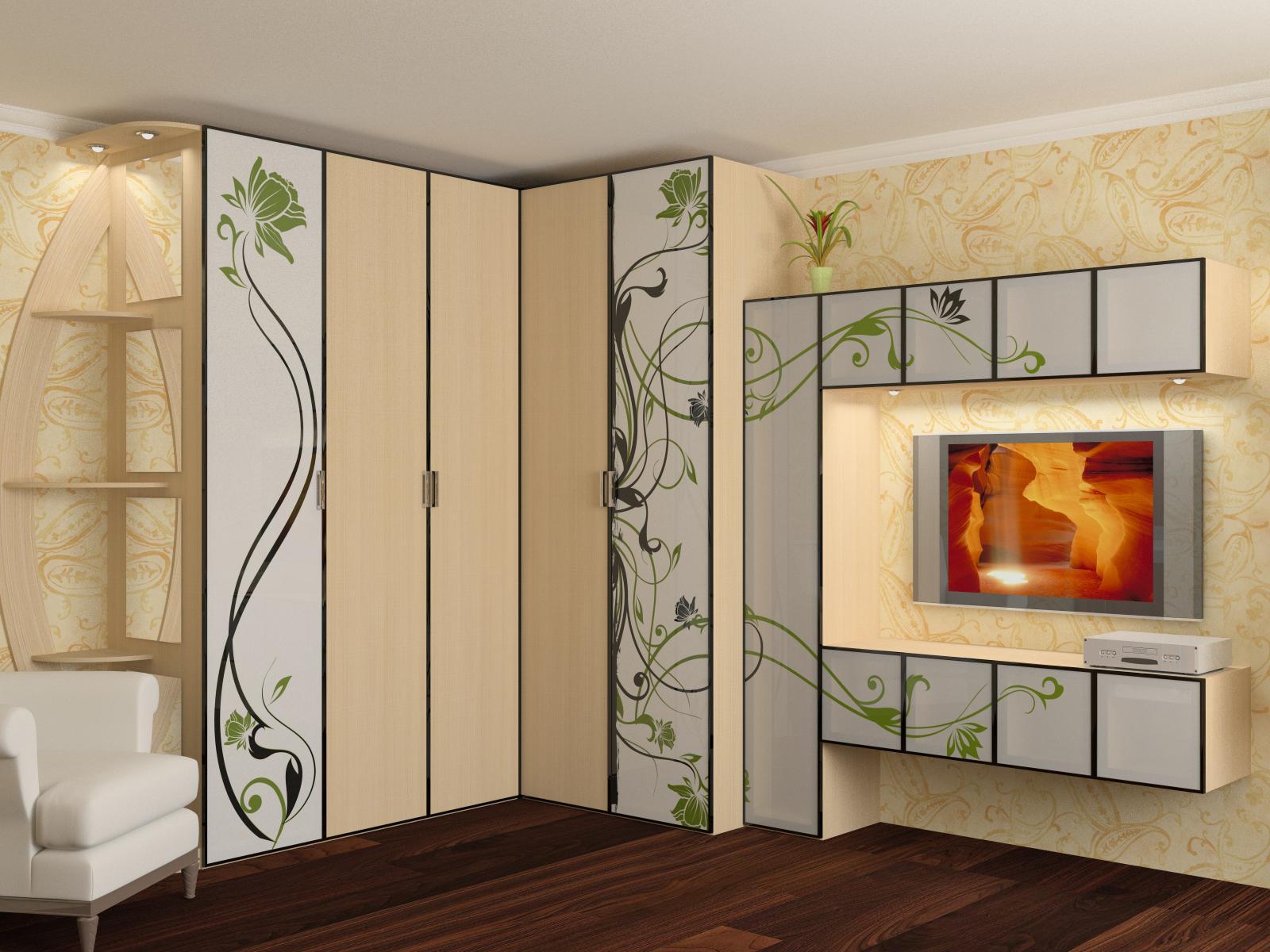 Шкаф в зал, разновидности, их плюсы и минусы, а также возмож.