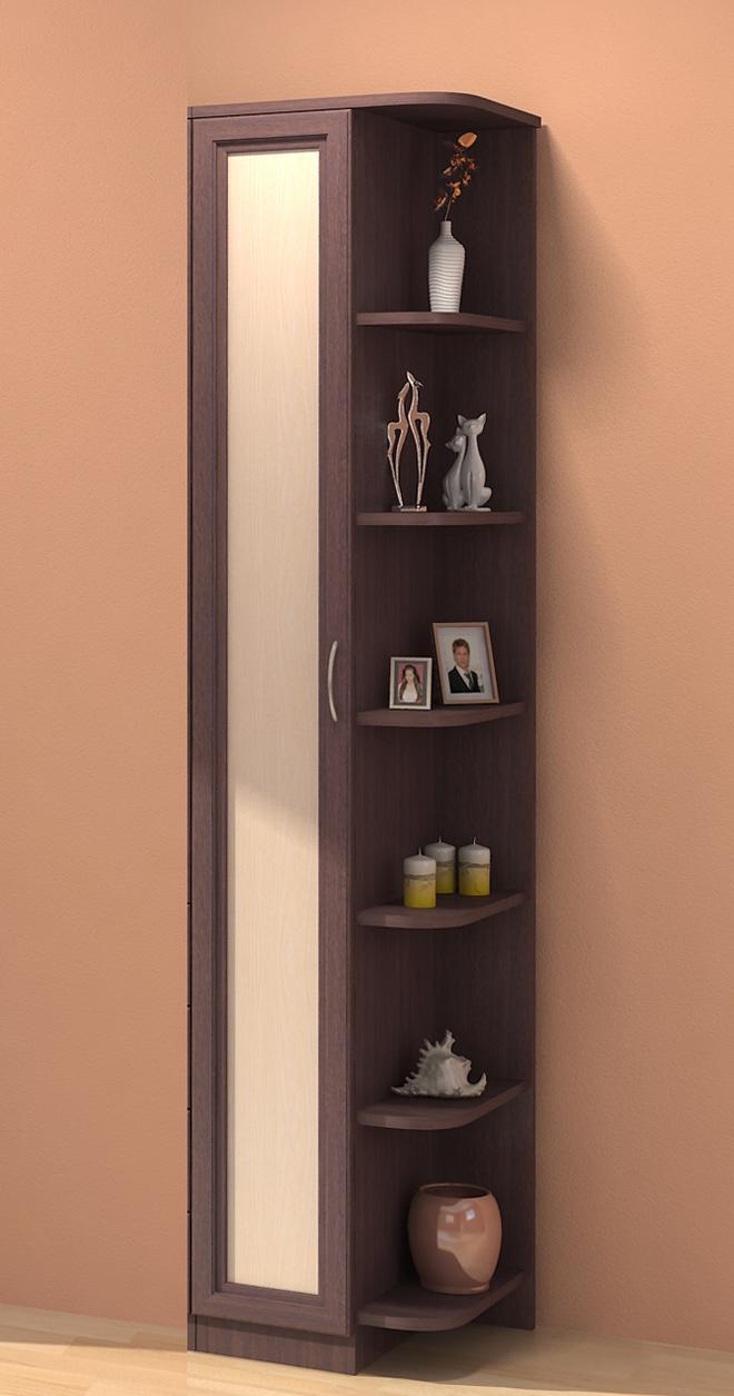 Шкаф с полками и зеркалом фото.