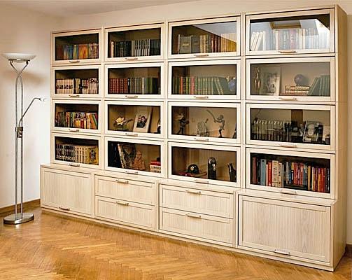 Закрытый шкаф библиотека