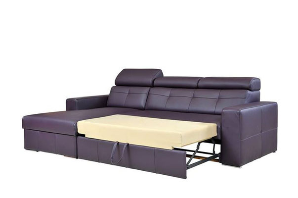 Раскладыающийся тип дивана для дома