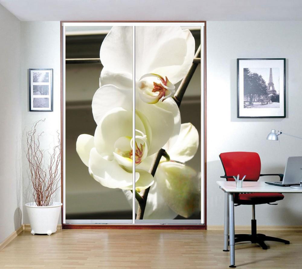 Фотопечать белая орхидея