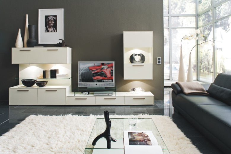 мебель в зал какие бывают варианты и сочетания современные идеи