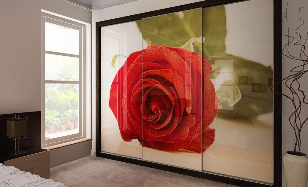 Роза на фасаде