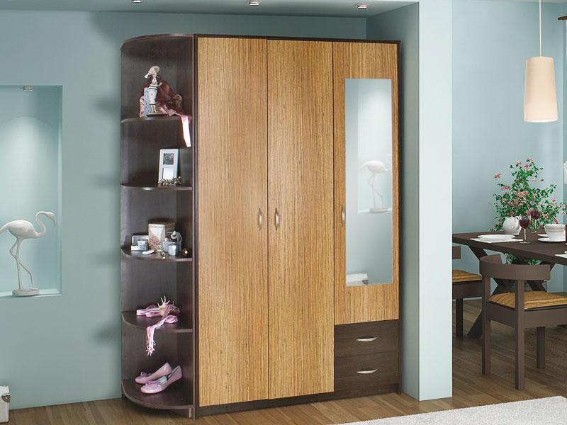 Шкаф распашной с зеркалом и ящиками в интерьере