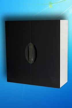 Шкаф с черным фасадом