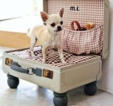 Чемодан-кровать для собаки на колесиках
