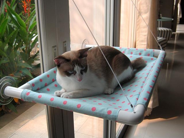 Гамак для кошки на окне