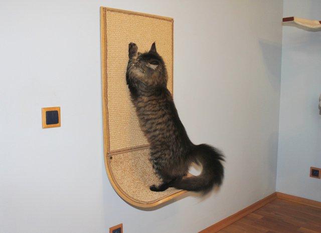 Когтеточка-лежанка для кошки
