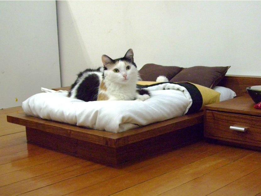 Кровать для небольшого животного