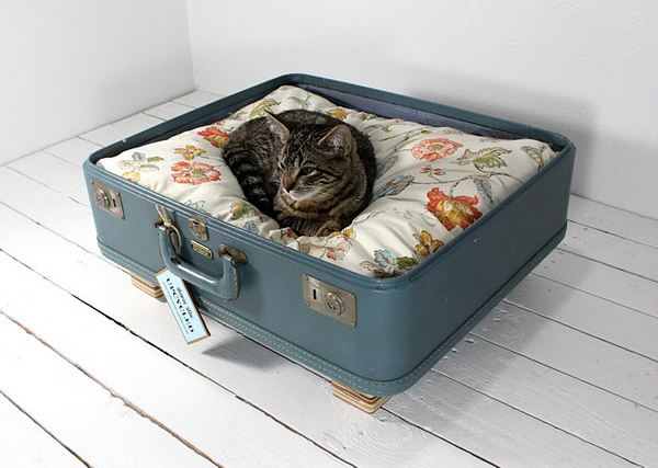 Лежанка для кошки из чемодана