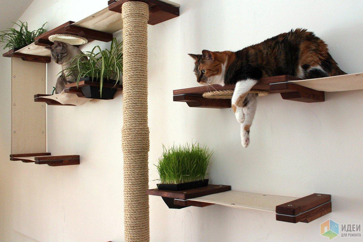Встраиваем кошку в интерьер