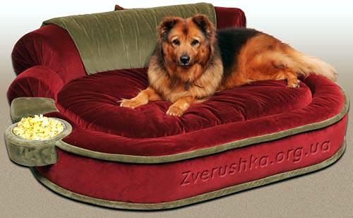 Диван - кровать для собаки