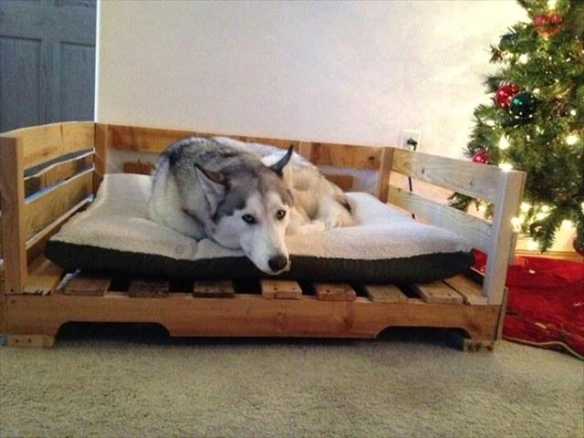 Мебель из поддонов для собаки