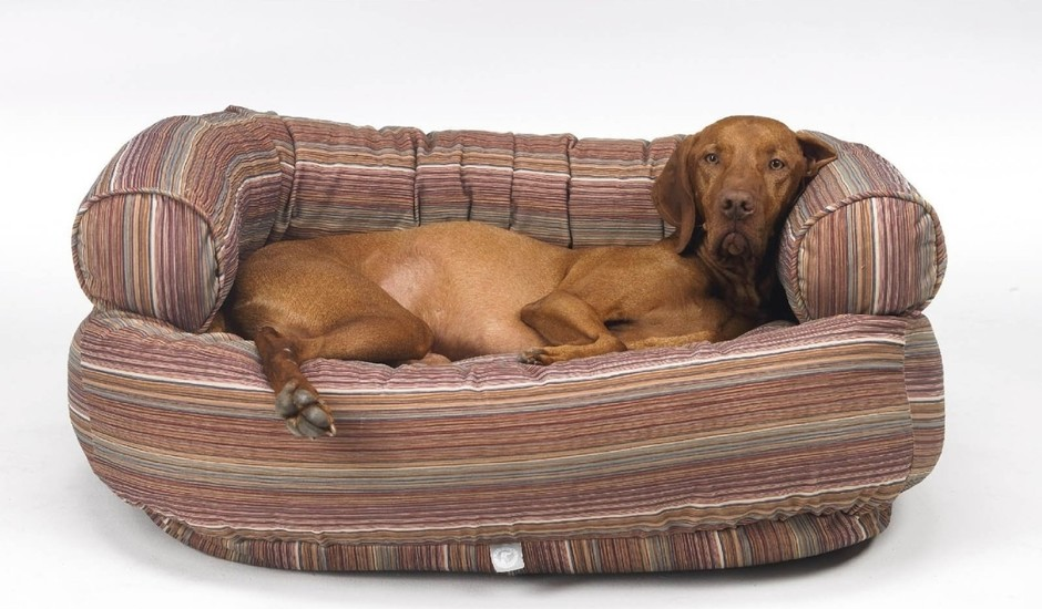 Мягкая мебель для животного