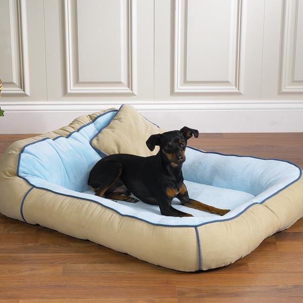 Необходима ли кровать для собак