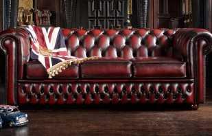 Разновидности диванов Честер, их особенности, преимущества
